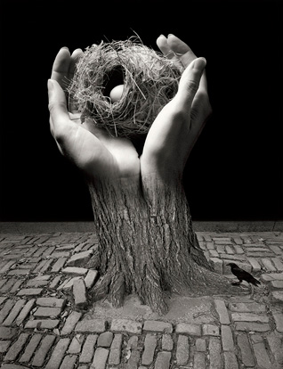 Journey into Night, 2006 (hands with nest)